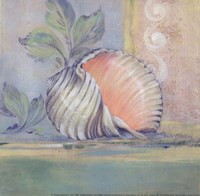 Tranquil Seashells II - Mini Framed Print