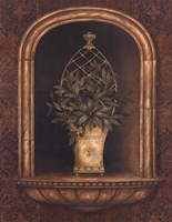 Olive Topiary Niches II Fine Art Print