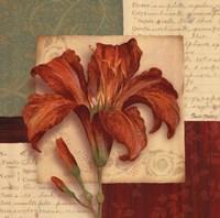 Bella Donna II - Grande Framed Print
