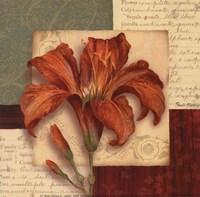 Bella Donna II - Petite Framed Print