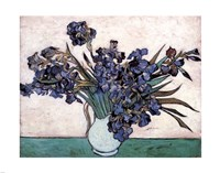 Irises in Vase, c.1890 Framed Print