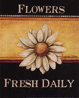 Flowers Fresh Daily - Mini Framed Print