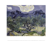 The Olive Trees, 1889 Fine Art Print