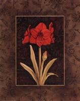 Damask Amaryllis - Mini Framed Print