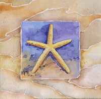 Starfish - Mini Framed Print
