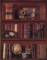Librairie III - Mini Framed Print
