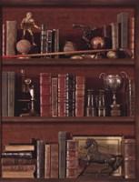 Librairie IV - Mini Fine Art Print