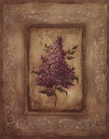 Savin Lilac - Mini Framed Print