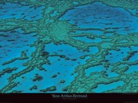 Grande Barriere De Corail Fine Art Print