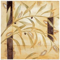 Olive Branch II Fine Art Print