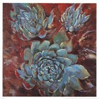 Blue Agave I Fine Art Print