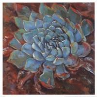Blue Agave II Fine Art Print