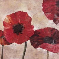 Poppies Fine Art Print