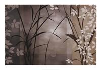 Silver Whispers II Framed Print
