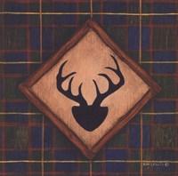 Antlers Framed Print