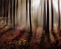 Forest in Pink Fine Art Print