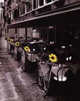 Sunflower Cafe Fine Art Print
