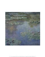 Water Lilies (II), 1907 Fine Art Print