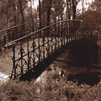 Wrought Iron Bridge II Framed Print