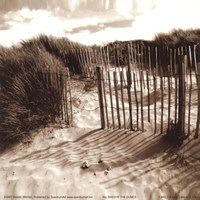 The Dunes Fine Art Print