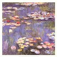 Water Lilies, c.1916 Framed Print