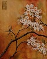 Oriental Blossoms I Framed Print