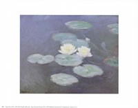 Nympheas Effet du Soir Fine Art Print