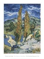 The Poplars at Saint-Rmy, c.1889 Fine Art Print