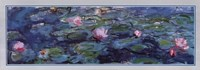 Water Lilies (Detail) Framed Print
