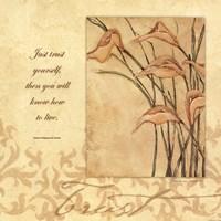 Trust - Lilies Framed Print