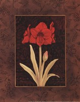 Damask Amaryllis - petite Framed Print