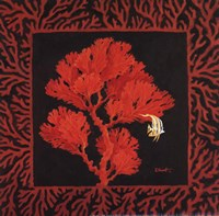 Sea Fan II Framed Print