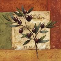 Olives du Midi II Framed Print