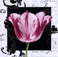 Damask Tulip I Fine Art Print