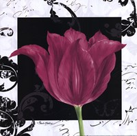 Damask Tulip IV Fine Art Print