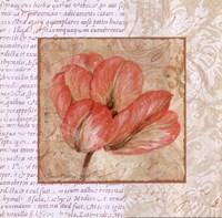 Le Jardin I Framed Print