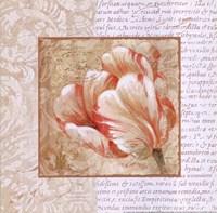 Le Jardin IV Framed Print