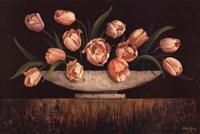 Elegant Tulips Fine Art Print