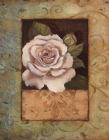 Antique Rose I Fine Art Print