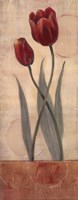 Circular Balance I - mini Fine Art Print