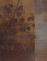 Woodland Shadows II - CS Fine Art Print