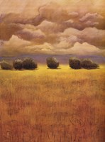 Golden Fields II Fine Art Print