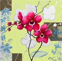 Orchids in Bloom IV Fine Art Print