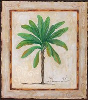 Banana Palm Fine Art Print