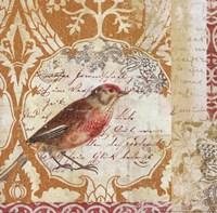 Bird Collage Study I Framed Print