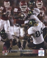 Adrian Peterson University of Oklahoma Action Fine Art Print