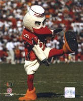 Sebastian -The Mascot of  University of Miami Hurricanes, 2003 Framed Print
