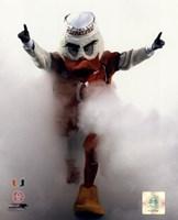 Sebastian the University of Miami Hurricanes mascot 2006 Fine Art Print