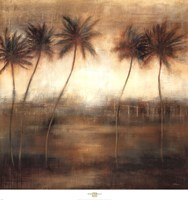Five Palms Fine Art Print