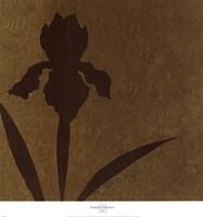 Iris (Metallic) Framed Print